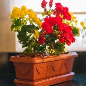 jardineira romana 35 ceramica 2