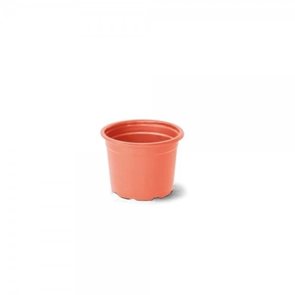 comum 1 ceramica