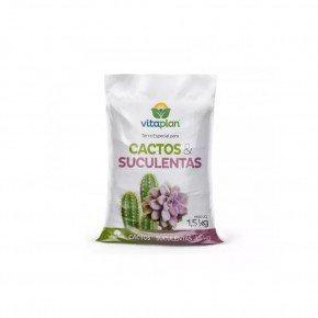 cactus e suculentas 1 5kg