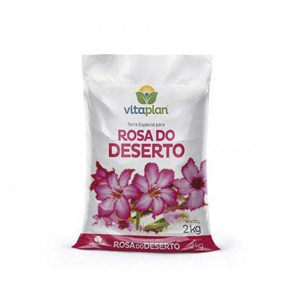 rosa do deserto 2kg