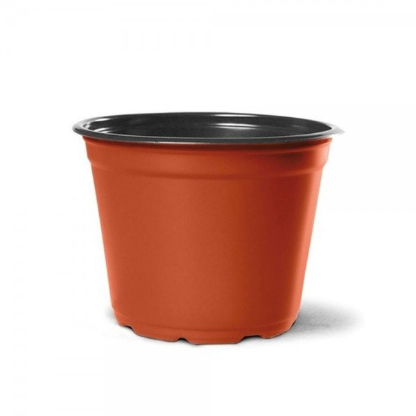 np 14 ceramica