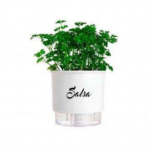vaso auto irrigavel linha gourmet branco salsa n03 medio 16x14