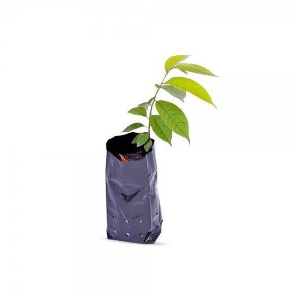 saco plastico preto para mudas 8 x 14 x 0 10 1kg 890 unidades