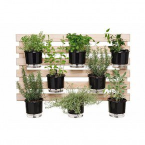 trelica de madeira raiz tamanho 60x100 para vasos autoirrigaveis horta vertical bom cultivo