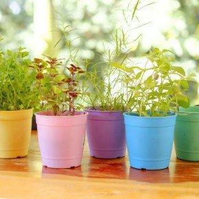 vaso aquarela vasos para plantar temperos bomcultivo