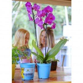 vaso aquarela vasos para plantar temperos bomcultivo azul