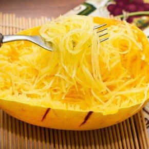 semente abobrinha bavette abobrinha espaguete bom cultivo isla