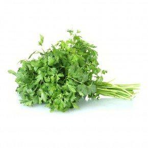 salsa salsinha cebolinha tempero verde bom cultivo