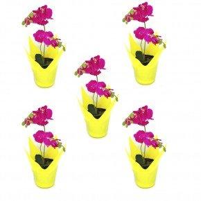 vaso flexivel cachepo vaso reciclavel vaso garrafa pet vaso importado bom cultivo