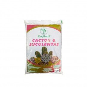 substrato cactos e suculentas bom cultivo